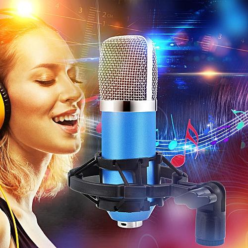 Condenser Pro Audio BM700 Microphone Sound Studio Dynamic Mic +Shock Mount-Blue