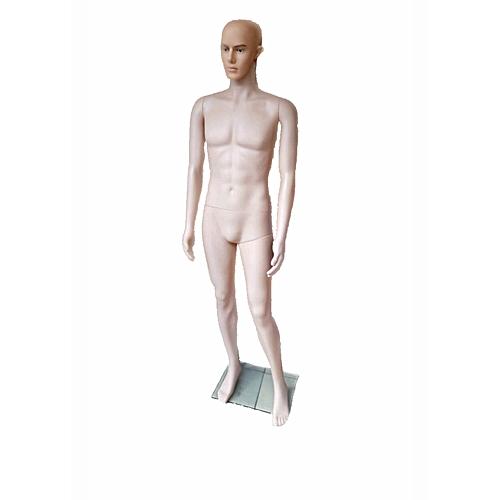 Male Bald Head Mannequin