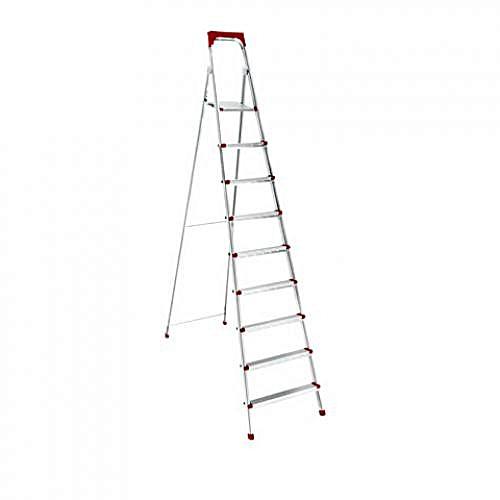 9 Step Iron Ladder