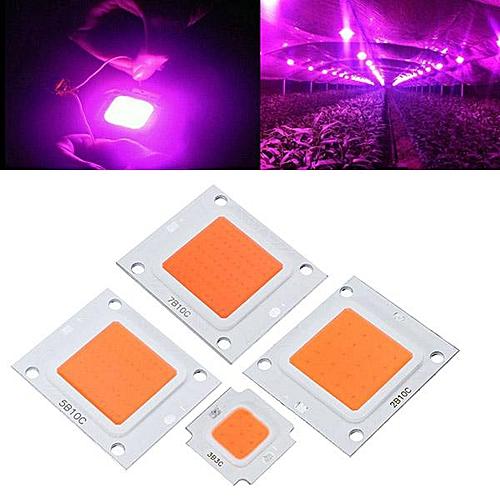 1Pcs 50W LED Cob Indoor Garden Plant Grow Lamp Clips DIY Full Spectrum Growth Light