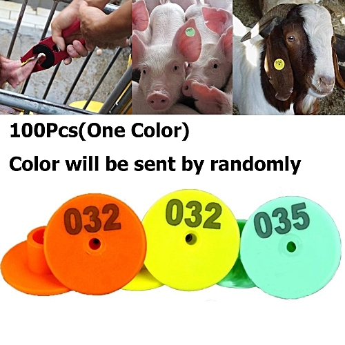 100x Round Ear Tag For Pig/Sheep/Cattle Color Random