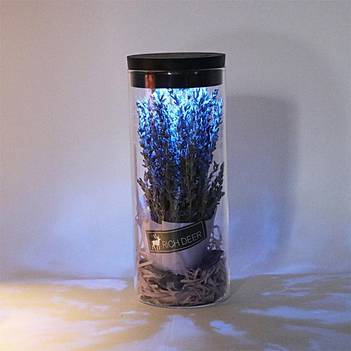 Flower In Glass Babysbreath/ Forget-me-not/ Lavender Immortal Flower Night Light