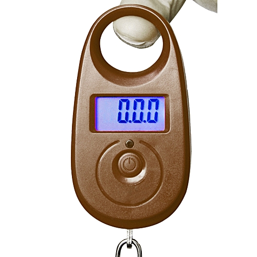 1pc Practical 25kg X 5g Mini Hanging Luggage Weighing Palm Scale Digital Hook Lcd Display Precision Portable Balance Bascula