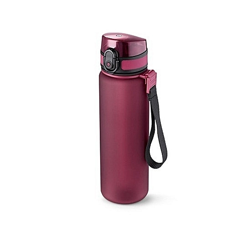 DRINKING WATER BOTTLE WITH REUSABLE COOLING INSERT, BERRY