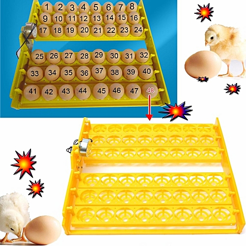 Automatic 48 Egg Chicken Quail Poultry Turner Tray With A PCB Turning Motor