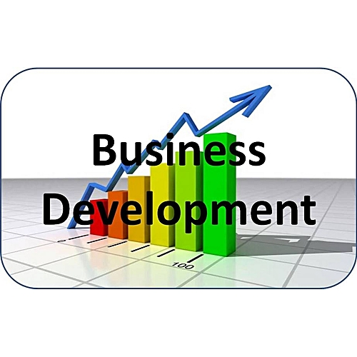 Business Development Essential Skills For Sales And Marketing People