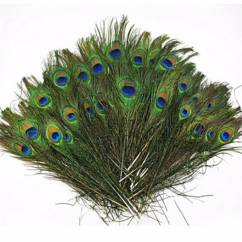 Hot Sale 10pcs Lots Real Natural Peacock Tail Eyes Feathers 8-12 Inches /about 23-30cm