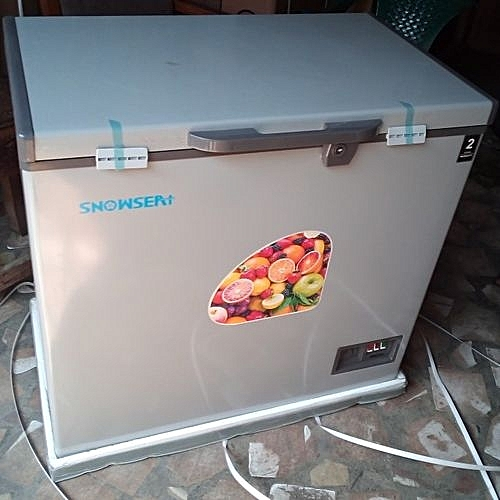 Chest Deep Freezer BD300G...