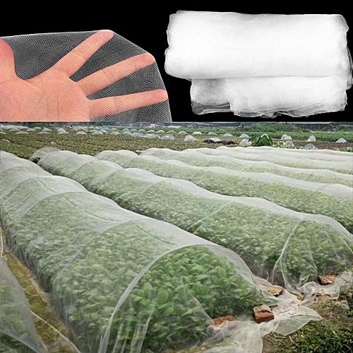 10M/6M X 2.5M Garden Bird Net Netting Vegetables Pest Plant Crops Protect Mesh