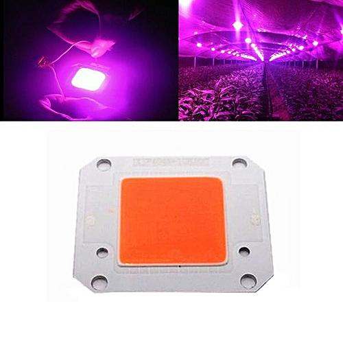 DC20-32V Full Spectrum Plant Grow Light Chip 50w
