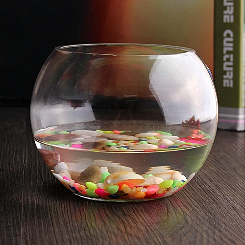 15cm Round Clear Glass Vase Fish Tank Ball Bowl Flower Planter Terrarium Home Decor Transparent Color