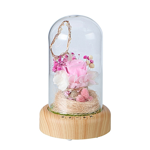 Bloom LED Bluetooth Sound Real Flower Rose Bottle Lamp USB Charge Night Light