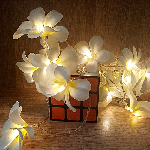 Battery Powered 3M 5M Frangipani Shaped Warm White Fairy String Light For Christmas Party-