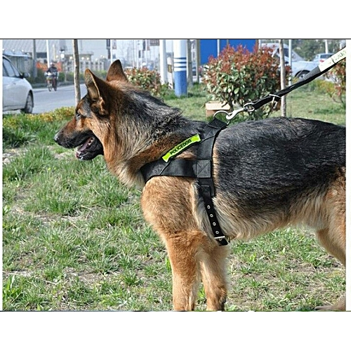 High Quality Dog Walk-out Harness Vest Collar With Leash