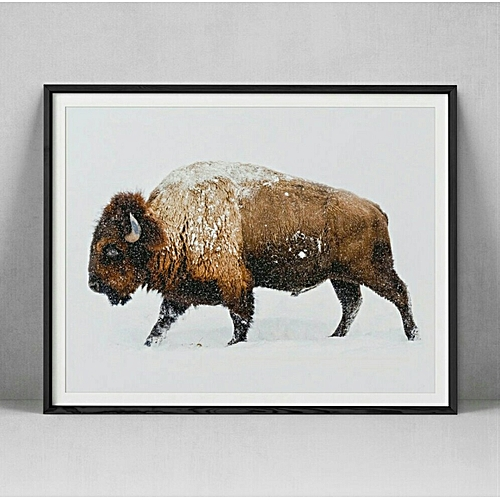 Wall Art - Bison Animal Photography Poster Wall Art Print Modern Wall Products Home Decor Trending Popular Wall Art