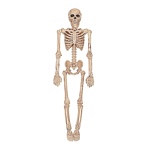 Horrible Halloween Skeleton Model Skull Skeleton Halloween Hanging Props