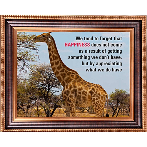 We Tend To Forget That Happiness Does Not Come As A Result Of Getting Something We Don't Have But By Appreciating What We Do Have (Big Size)