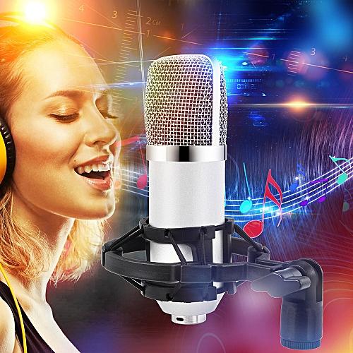Condenser Pro Audio BM700 Microphone Sound Studio Dynamic Mic +Shock Mount-White