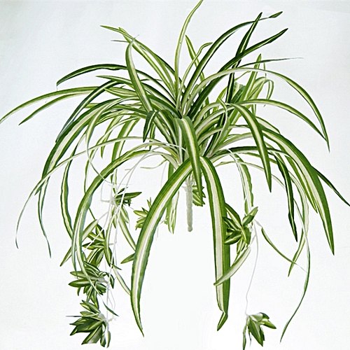 1 Bouquet Large Size Simulatio Chlorophytum Comosumn Plant Wall Decorate Artificial Plant 60CM