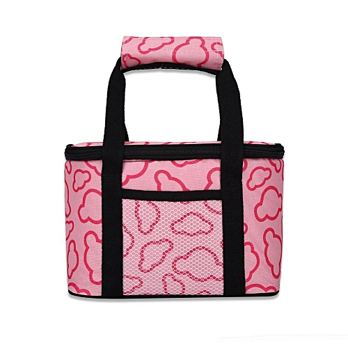 SHANYU Outdoor Fashionable Picnic Lunch Thermal Bag Reusable School Storage Cool Box