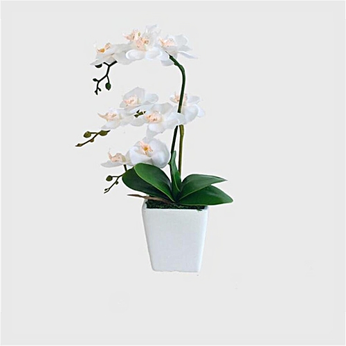 Artificial Orchid Plant In A Pot Flowers Potted Small Indoor House Office
