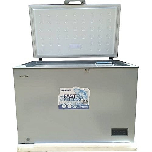 Chest Freezer BFS-316-CEG 316L Great For Ice Block Business