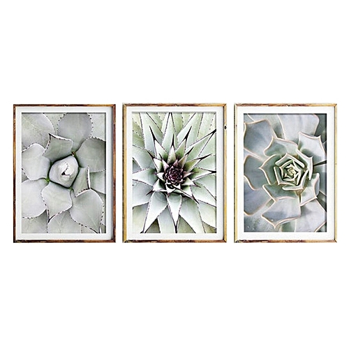 3 Pieces Beautiful Plant Cactus Large Size HD Modern Home Wall Decor Abstract Canvas Print Oil Painting Wall Art Picture House Decoration Posters 30*40cm