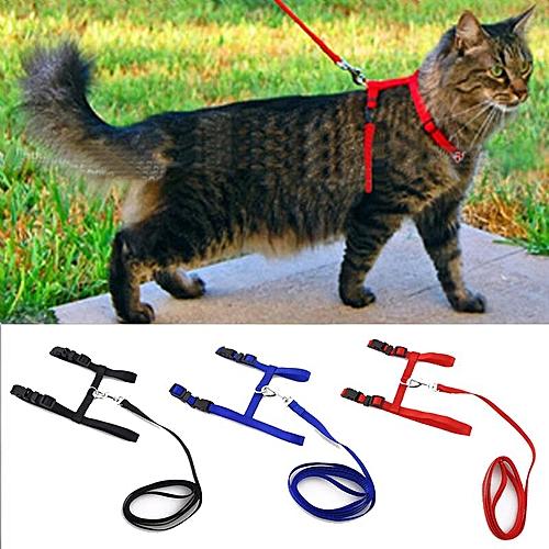 Adjustable Cat Dog Leash Collar Pet Supplies Red