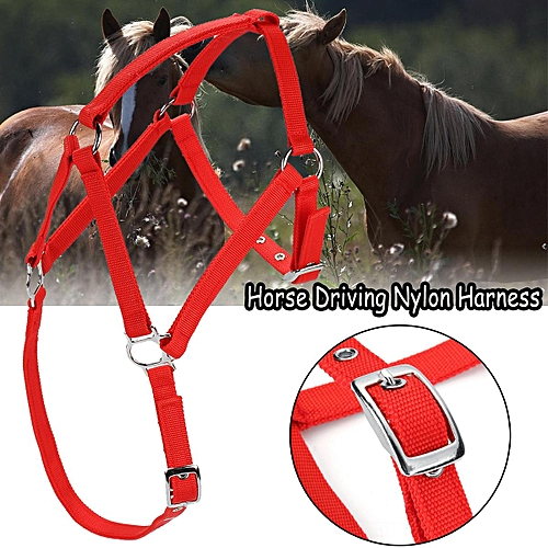 Horse Nylon Popular Driving Harness Halter With Adjustable Headstall For Pony
