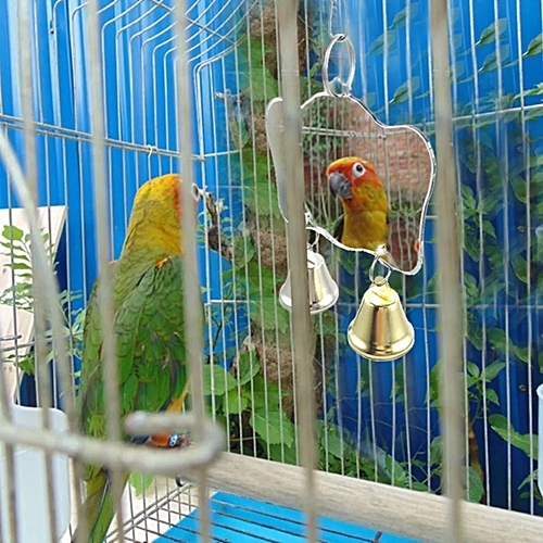 Parrot's Toy Mini Mirror With Bells