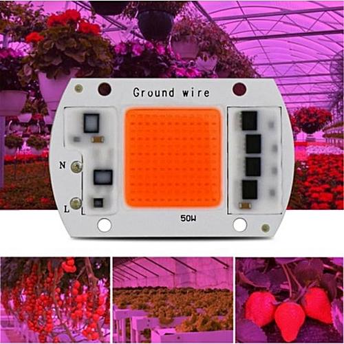 AC220V 30W Full Spectrum Plant Grow COB Chip Light