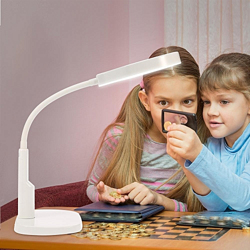 5x 12x LED Magnifying Lamp With Clamp Desk Magnifier Light Cosmetic Tattoo Manicure US