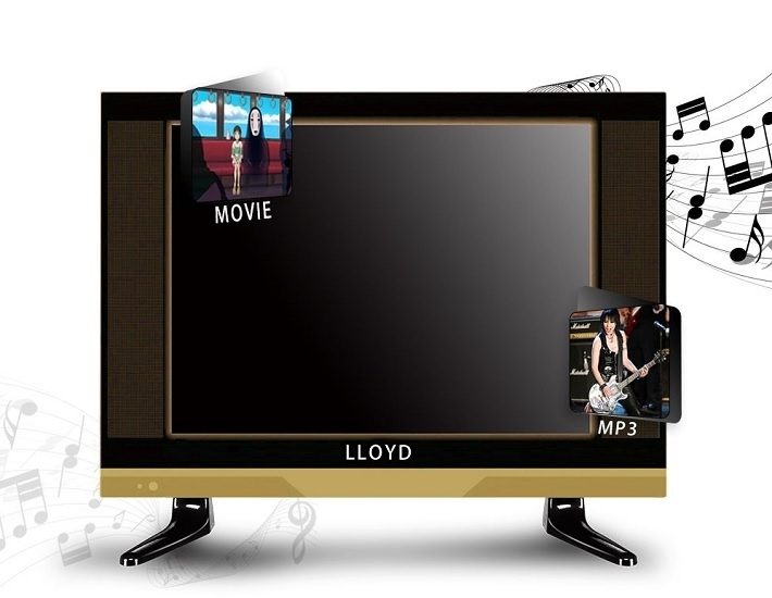 Lloyd-TV-3