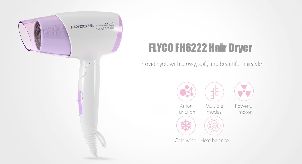 FLYCO FH6222 Fashion Hair Dryer Anion Function