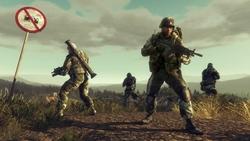 Genre-defining multiplayer
