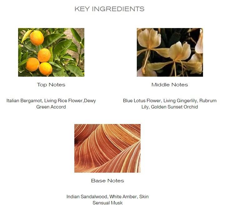 Elizabeth Arden Beauty EDP notes details