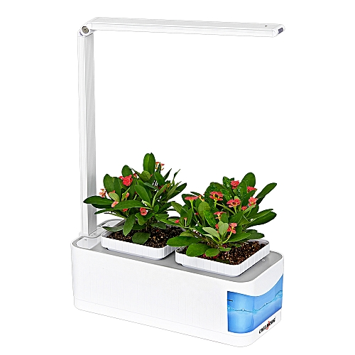 IndoorGarden Kit With Desk Lamp FunctionLED Plant Grow Light
