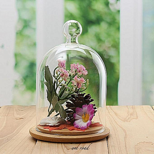 Glass Display Cloche Bell Jar Dome Flower Immortal Preservation With Wooden Base