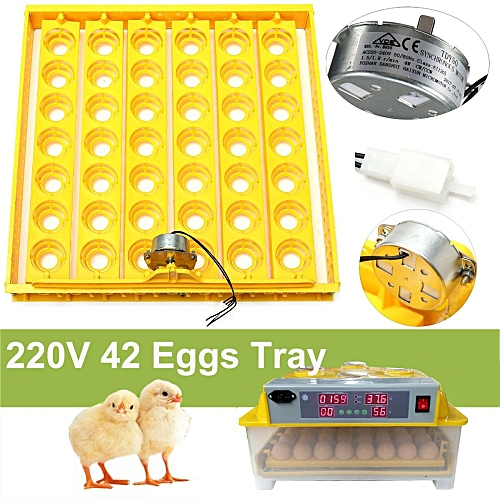 42 Egg Automatic Incubator Tray Digital Hatching Temperature Control 220V Yellow
