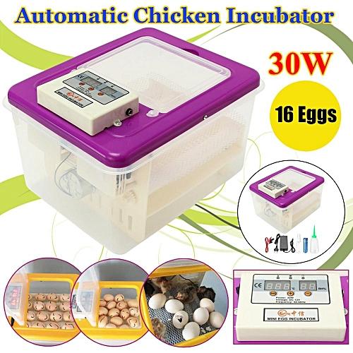 DC12V 30W 16Eggs Automatic Poultry Chicks Incubator Mini Double Screen Display Purple