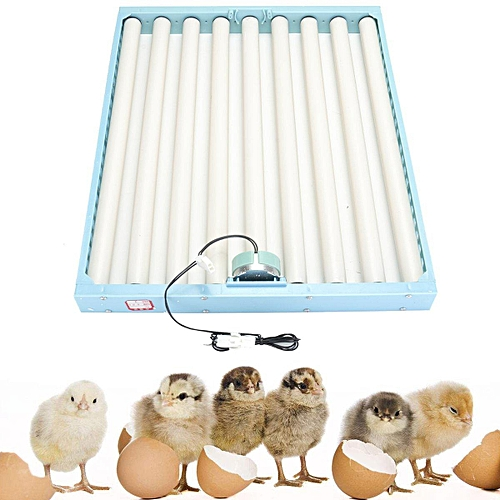 Chicken Eggs Incubator Tray Automatic 360° Turner Duck Quail Bird Poultry Eggs