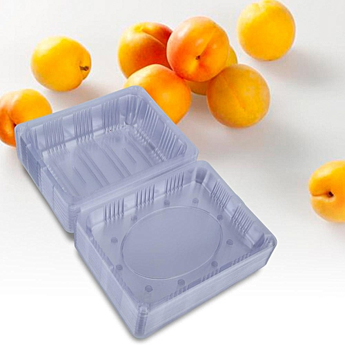25 PCS Disposable Plastic Hinged Loaf Food Fruit Storage Box