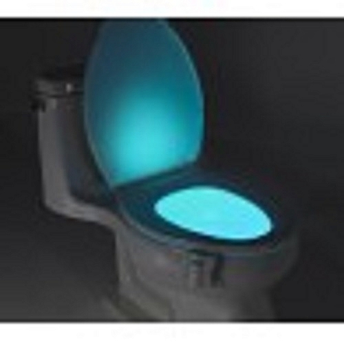Motion Activated Toilet Bowl Night Light