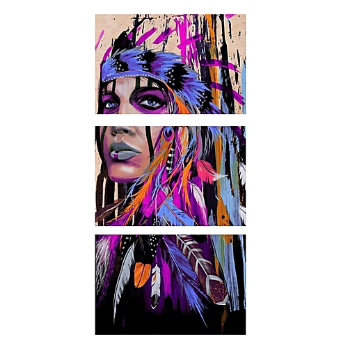 3Pcs Indian Woman Abstract Wall Art Oil Painting Canvas Print Picture Home Decor # Unframe