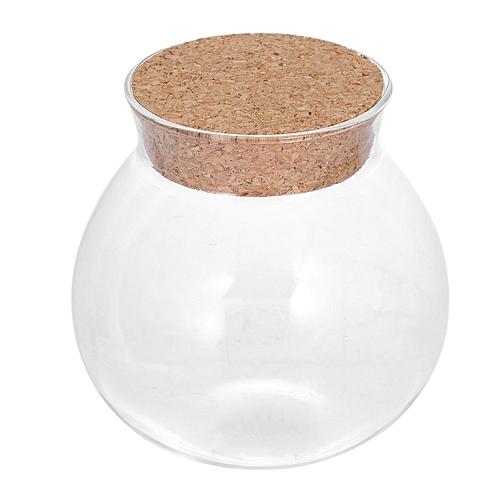 Creative Cute Design Tea Coffee Sugar Glass Canisters Flower Plant Vase