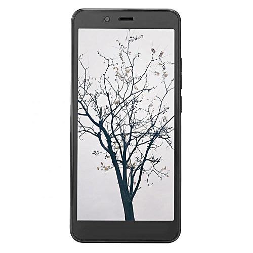 5 5'' QHD Screen Quad-Core 3G Network Fingerprint AI Face HiFi GPS Smart  Phone For Vivo X21