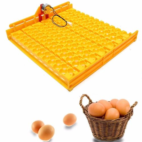 Plastic Incubator Automatic 154 Quail Eggs Turner Tray With 220 Volt Motor