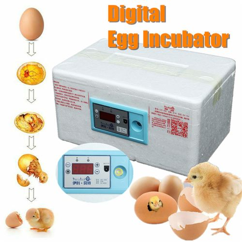 20 Egg Automatic Incubator Chicken Poultry Hatcher