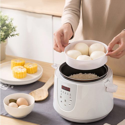 2L 400W Electric Lunch Box Rice Cooker Steamer 2 Layer