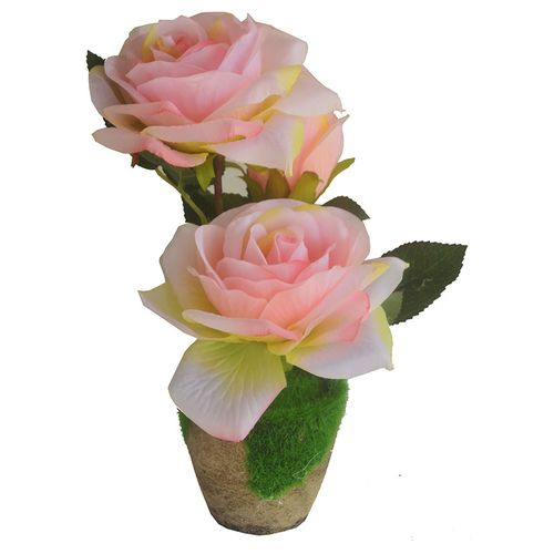 Rose Flowers In A Wooden Pot - Light Pink